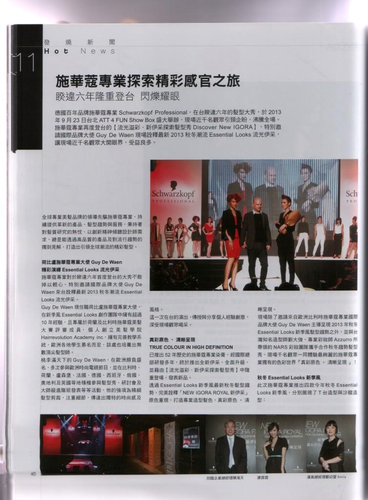 Salon News, issue 12 (2013)